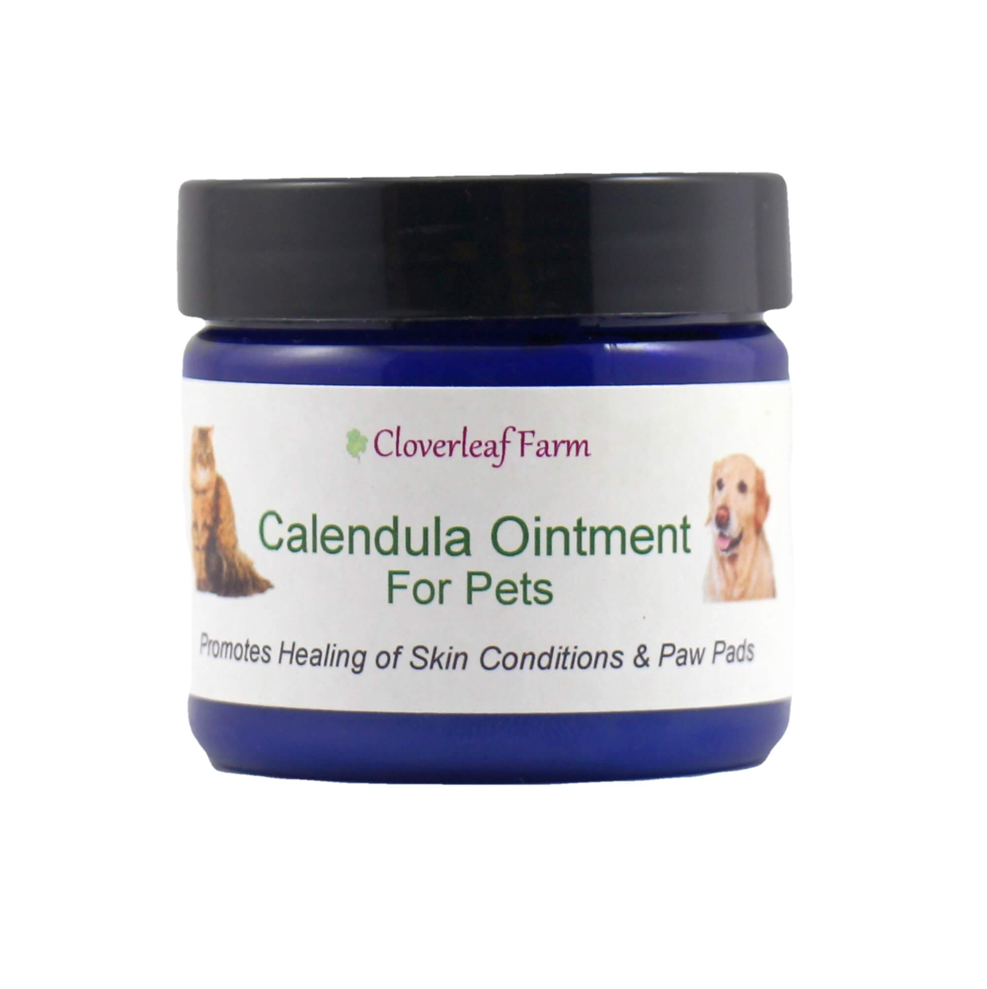 Calendula Ointment for Pets