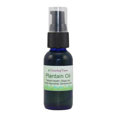 Plantain Herbal Infused Oil