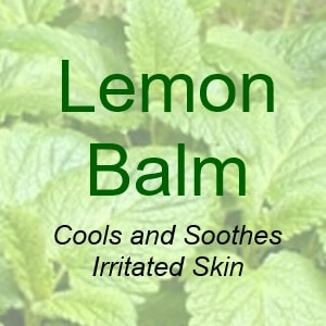 Lemon Balm Cools and Soothes Irritated Skin